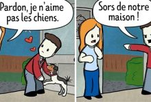 Photo de 30 Bandes dessinées montrant l'amour inconditionnel entre un maître et son animal de compagnie
